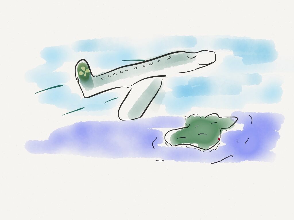 sketch of Aer Lingus plane above Ireland